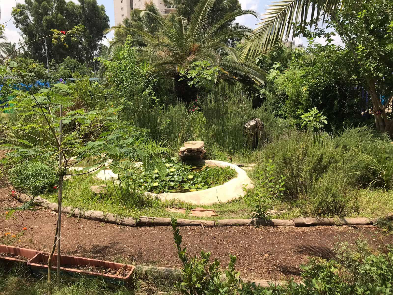 גינה, צילום: מלי אלמלם