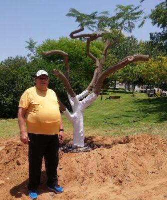 חיים גנדלמן עם העץ במקומו החדש ליד קניון גבעתיים. צילום: יחצ