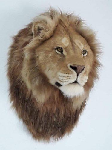 אריה עמי זרוג - פרא אדם