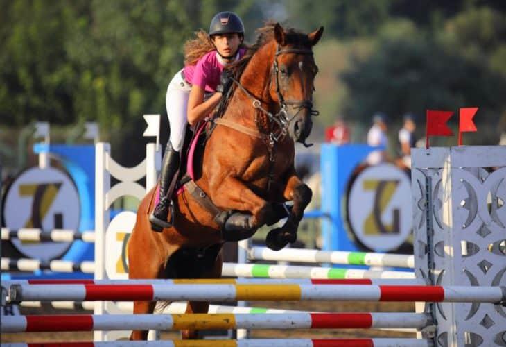 תחרות סוסים בר