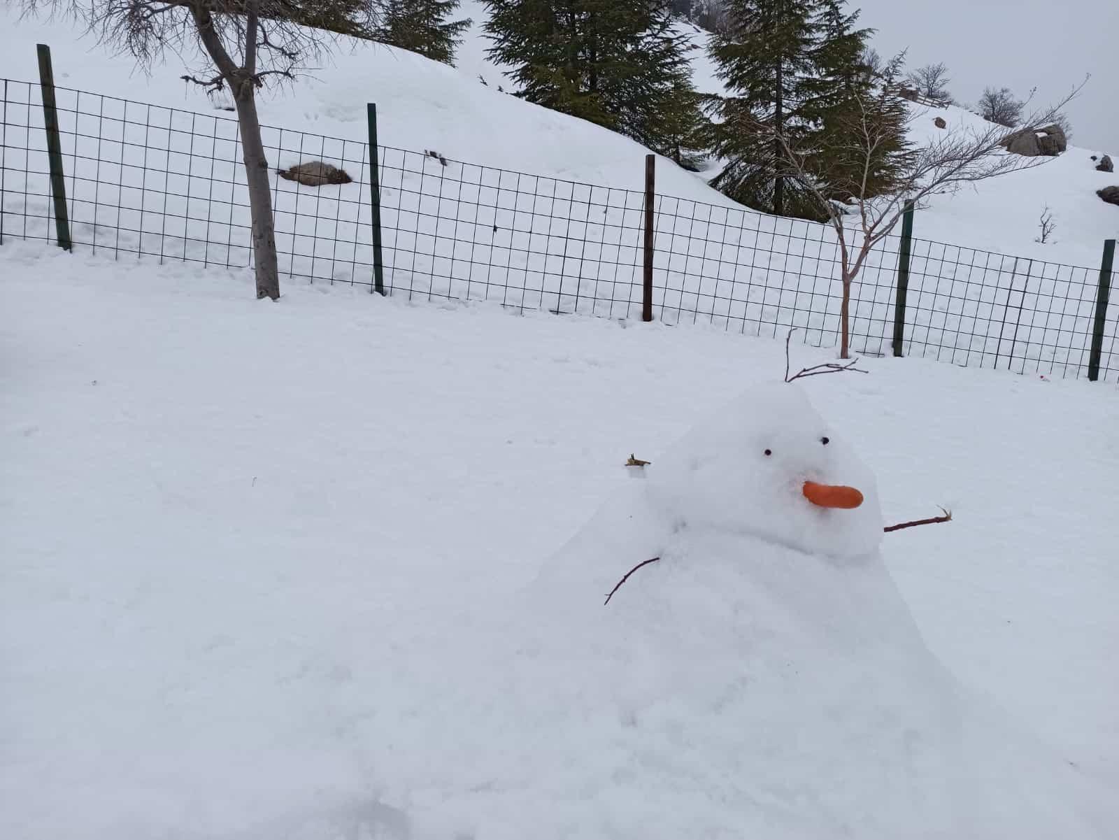 איש שלג מייד אין איזראל