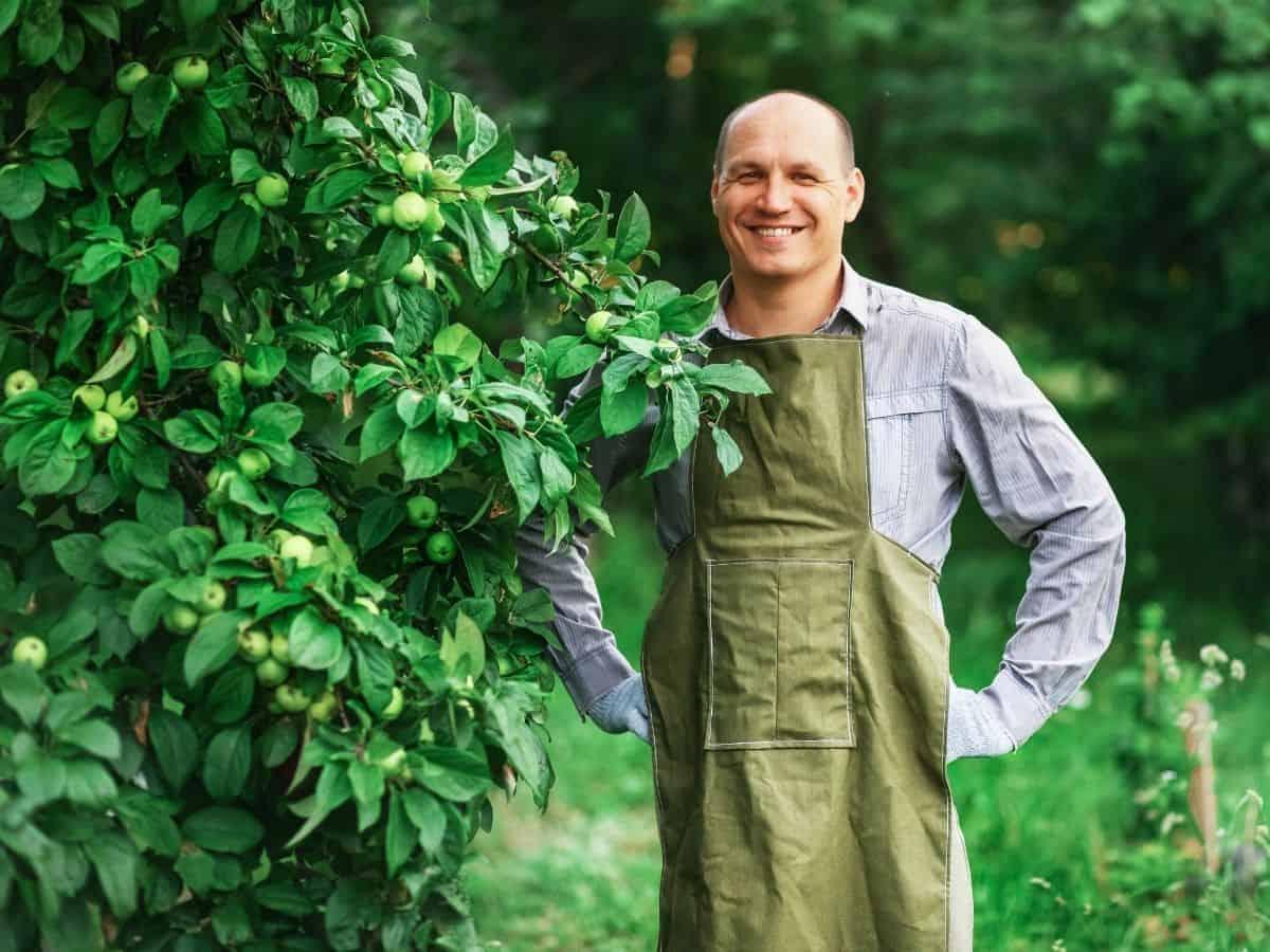 טיפול נכון בעצים (צילום אילוסטרציה Canva)