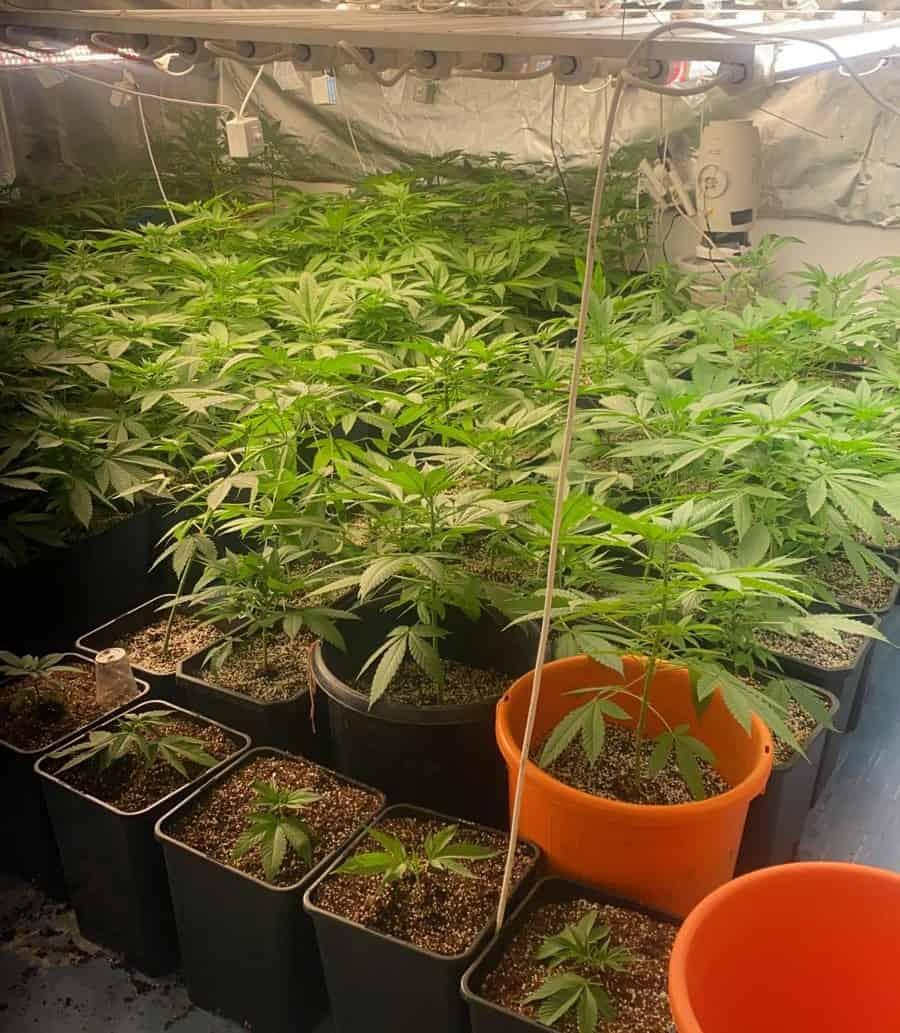 """מעבדת סמים בר""""ג (צילום דוברות המשטרה)"""
