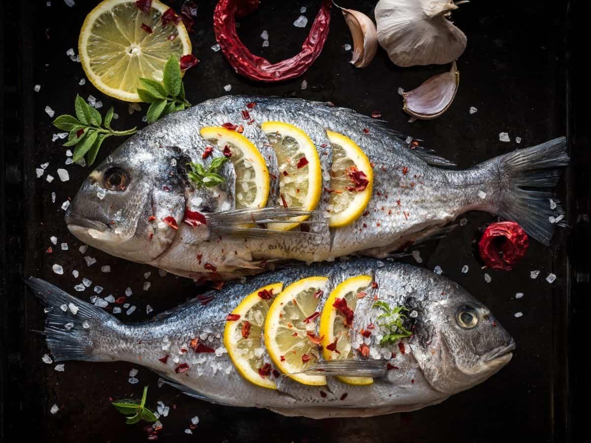 חנויות הדגים המומלצות ביותר בגבעתיים ורמת גן. אילוסטרציה canva